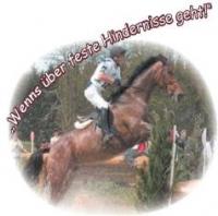 Geländetrainings Horgenberg